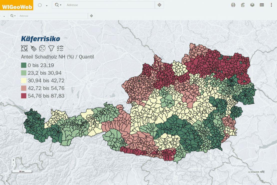 GIS-Analyse Käferrisiko